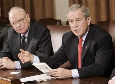 Bush image