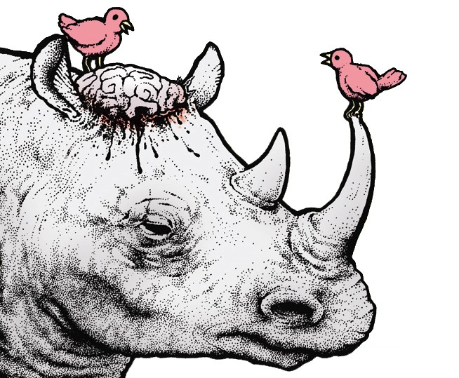 Perry Bible Fellowship - Lost Frame - Rhino Brain (Art, no text)